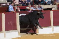 Ubeda/ Feria de San Miguel 2016: (Dimanche 02/10) Eugenio De Mora