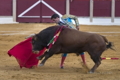 Ubeda/ Feria de San Miguel 2016: (Dimanche 02/10) José Carlos Venegas